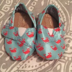Toms baby girl Tiny shoes